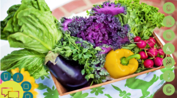 Food intolerance and allergy testing: some top tips on making sure the ASA tolerates your ads