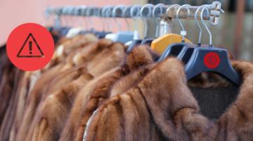 Enforcement Notice about misleading 'faux fur' claims